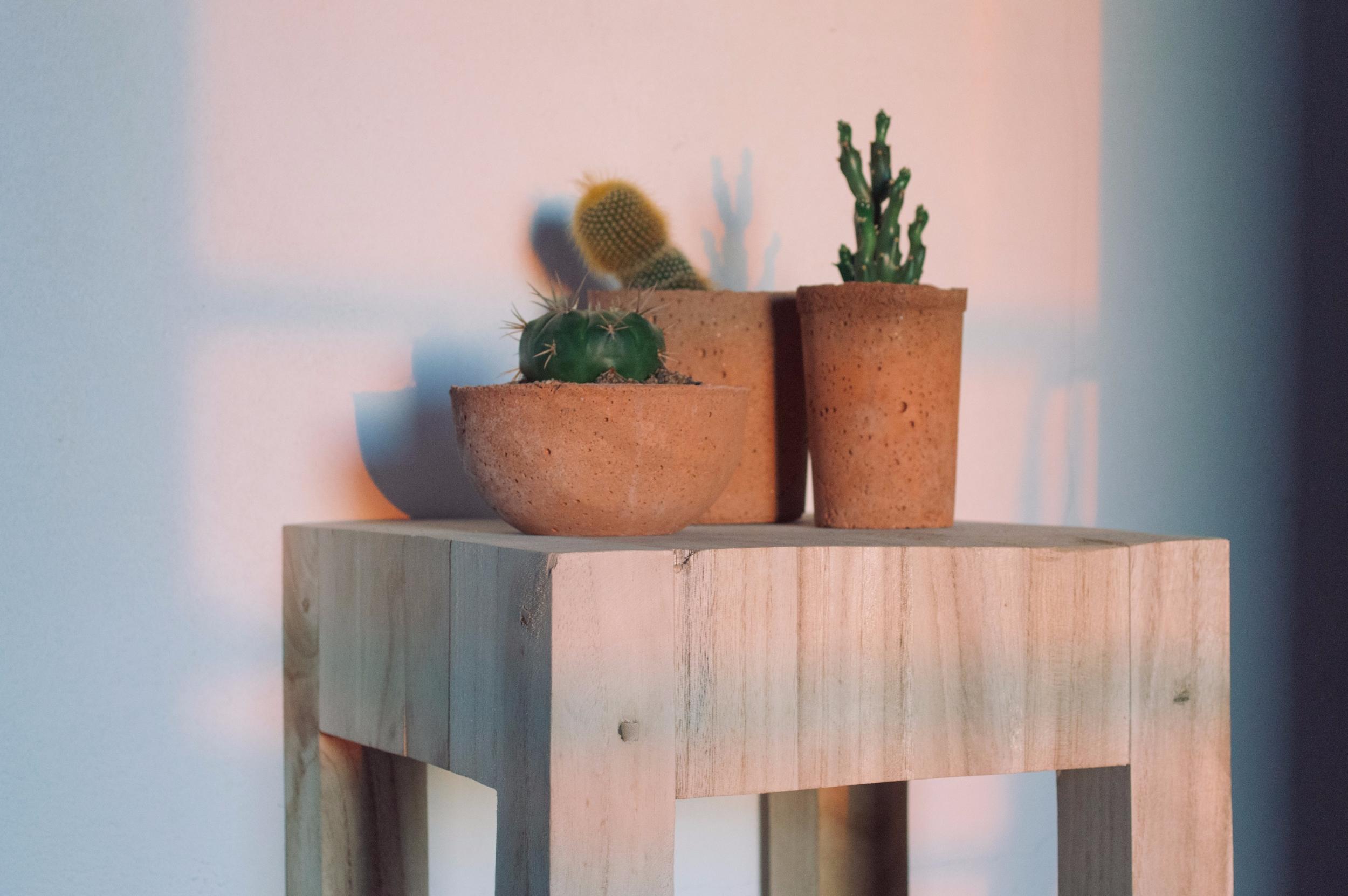 // terracotta concrete plant po - urban_terra | ello