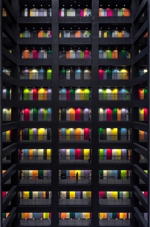 House Thousand Colours   Conor  - ronbeckdesigns   ello