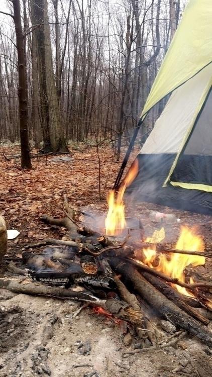 fears woods wind - camping, survival - danielsm | ello