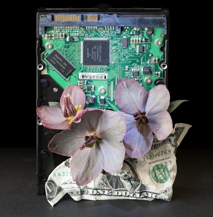 Silicon valley - bradverts   ello