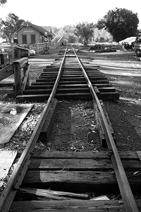 ello Photo Haiku lines Concise - ellophotohaiku | ello