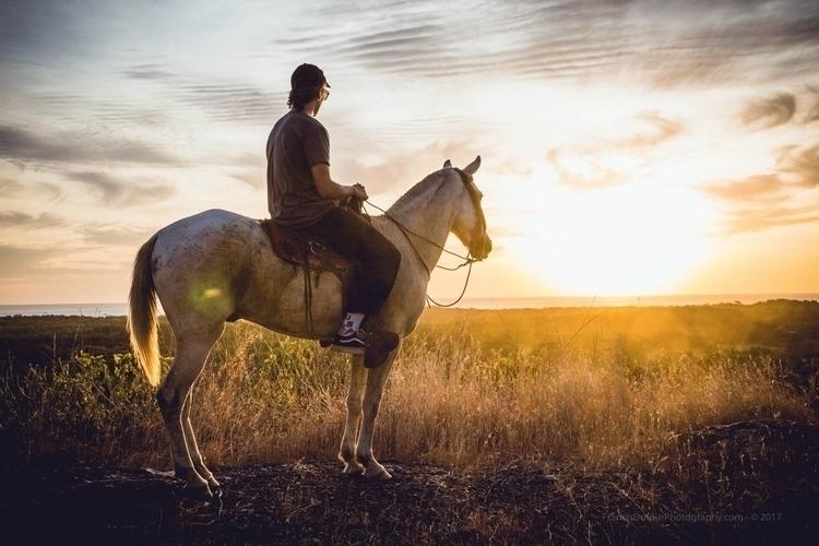 Golden Ride Horse riding sunset - francisdufour | ello