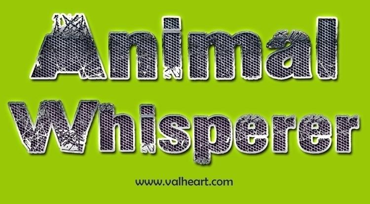 Animal whisperer teaches inter - bodytalksystemforanimals | ello