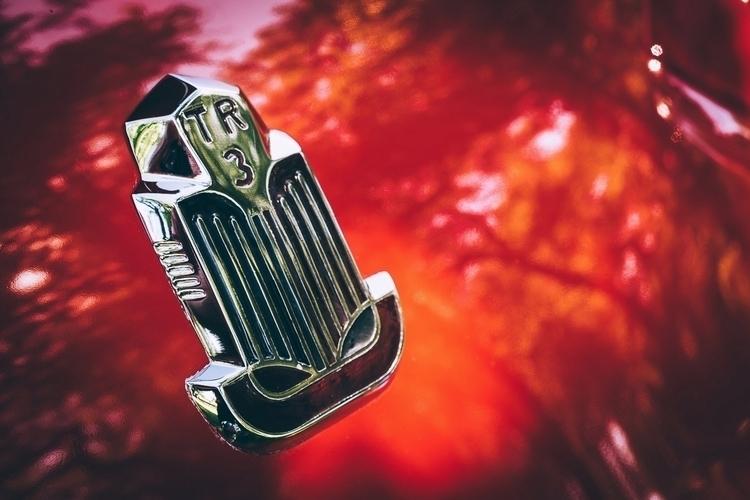 TR3 Detail badge Triumph TR3, s - mattgharvey | ello