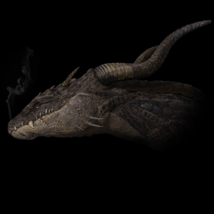 Dragon Head (ZBrush, Mari, 3ds  - joshpurple | ello