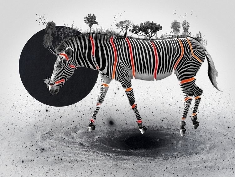 Bestiario: Zebra 40X30 collage - santasombra | ello