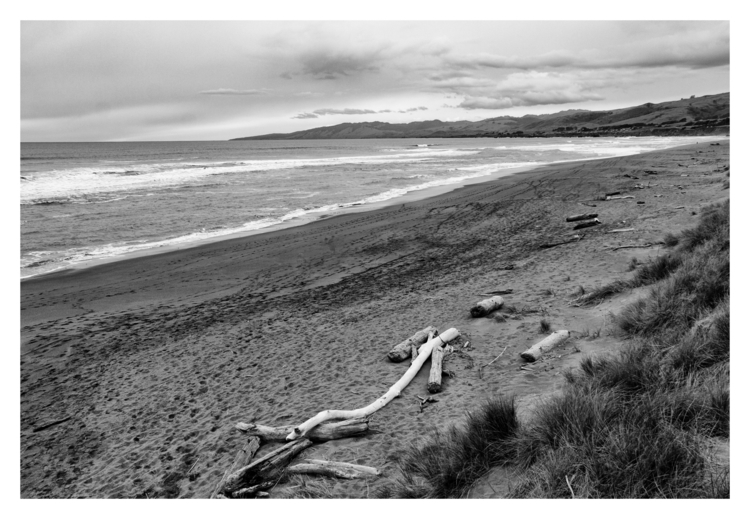Dunes, Bodega Bay, Sonoma Count - guillermoalvarez   ello