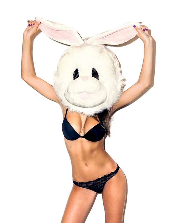 SlavNowosad.com - bunny - slavnowosad | ello