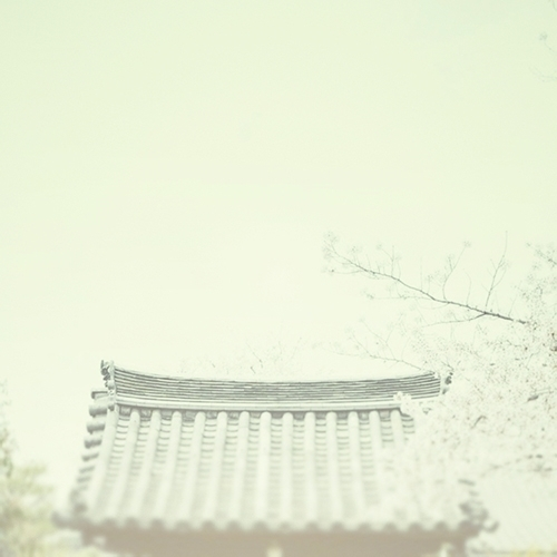 Haiku / spring flowers — temple - kashyapi | ello