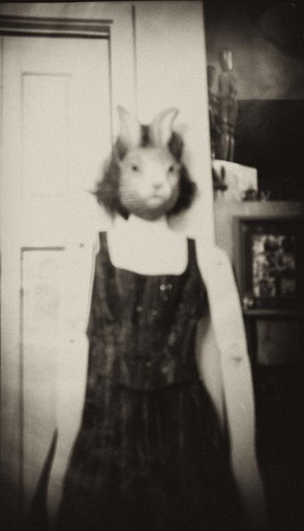 Easter Parade ..rabbit fancy dr - katznjamn31545 | ello