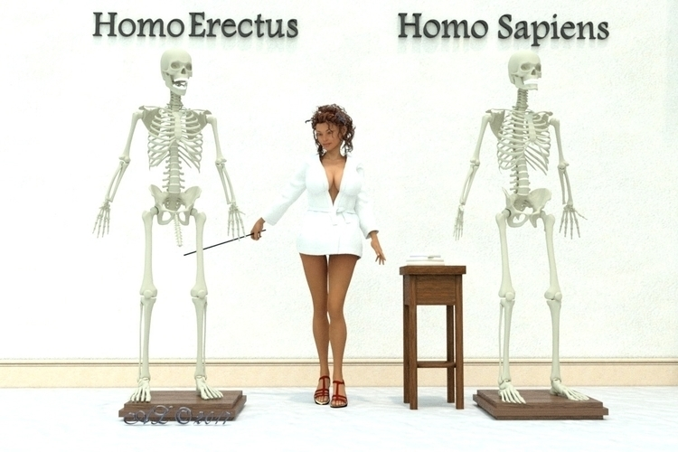 homo, erectus, skeleton, biology - franklange | ello