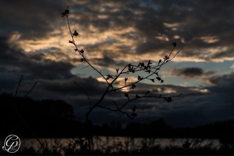 Sunset - nikon, d800e, photography - grepan | ello