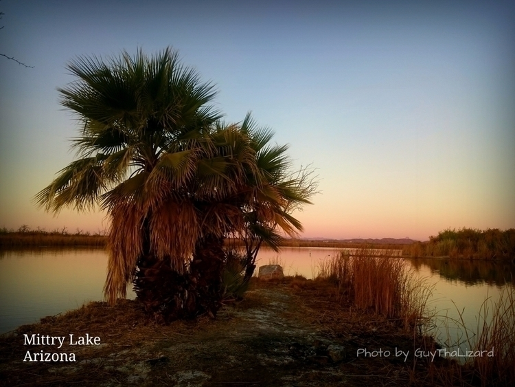 Love winter Arizona - guythalizard | ello