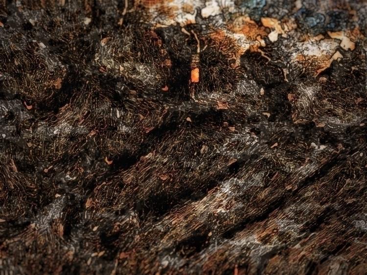 Scorch earth   [Ello](http://el - photografia   ello