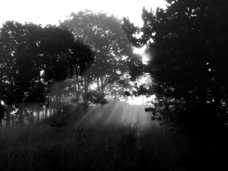 06:33 Friendly Foggy Fire decid - eleni_be | ello