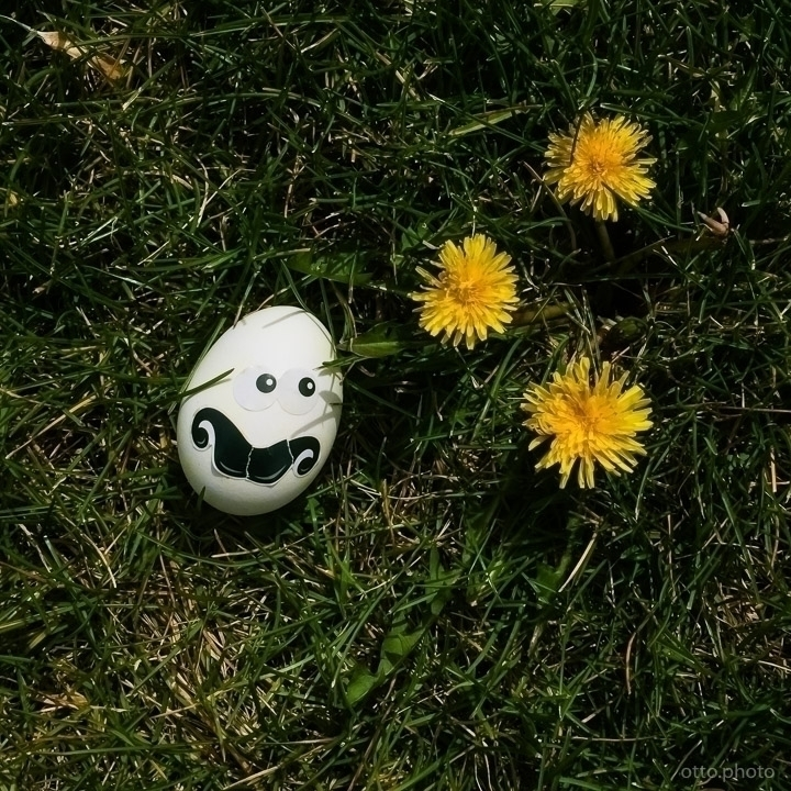 day Easter public park, real - ottok | ello