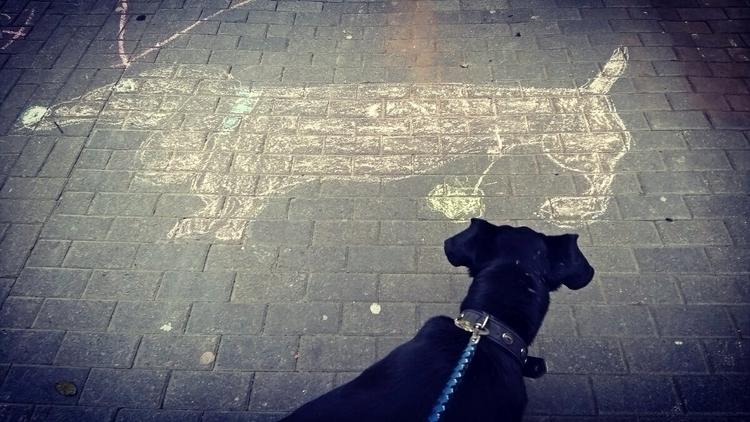 Pfui - dog, street - ooii | ello