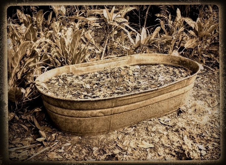 Le Tub dans le Jardin Pamir Kic - wabi__sabi | ello