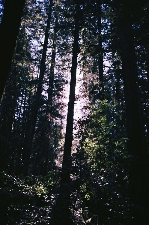 Earth pretty - 35mm, photography - ncai | ello