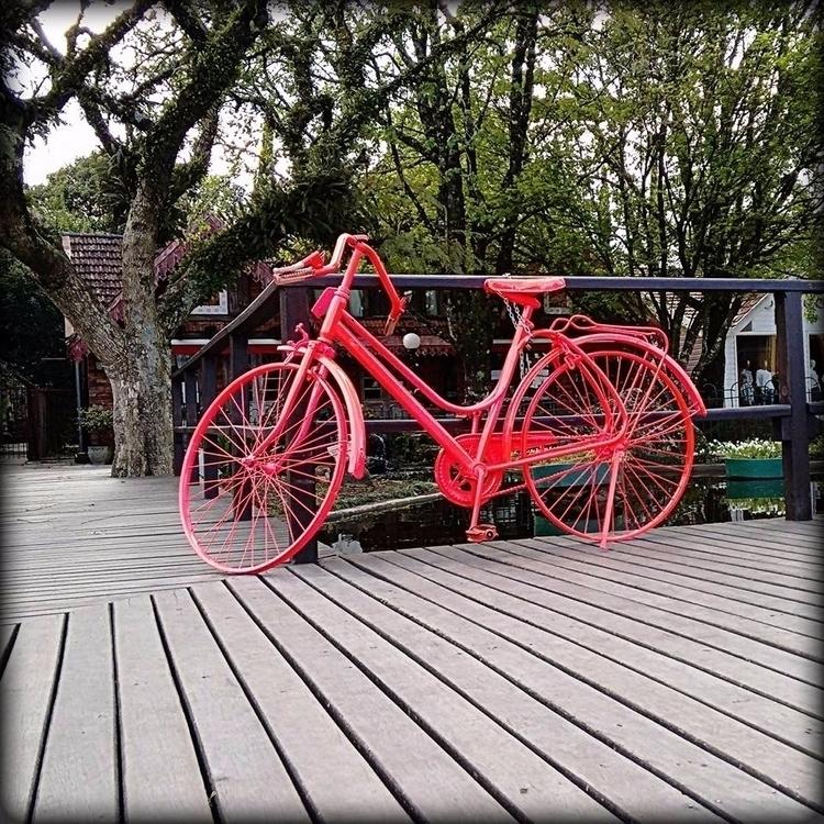 Bike - bike, photography - massanori | ello