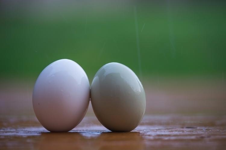 Weather, eggs leaning rain fall - jeffmoreau | ello
