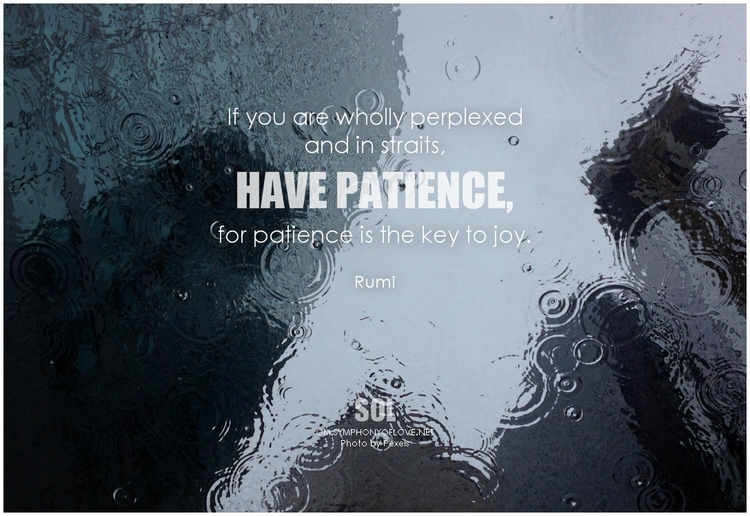 picture quotes Patience Timing  - symphonyoflove   ello