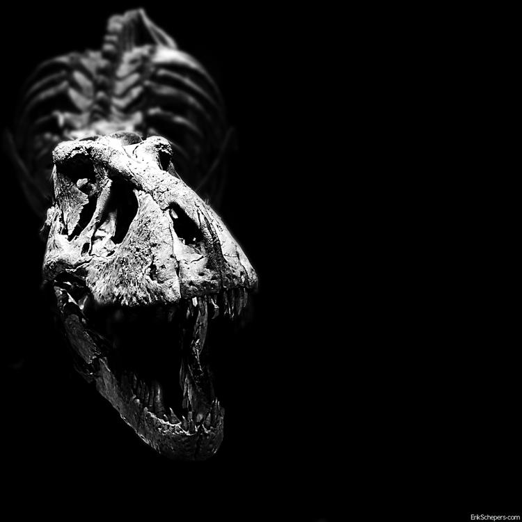 Roaaaar Trix Tyrannosaurus Natu - erik_schepers | ello