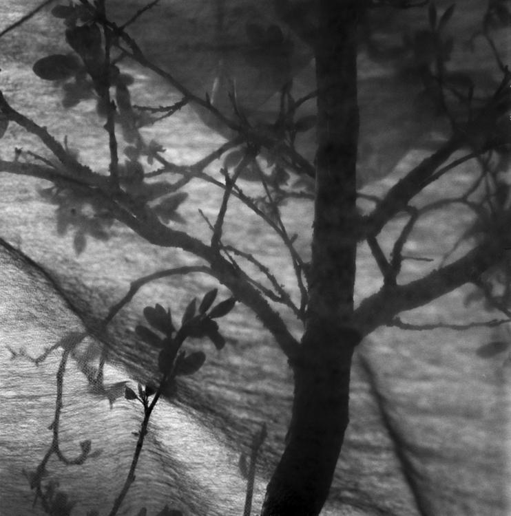 ellophotography, hasselblad, film - caspernicca | ello