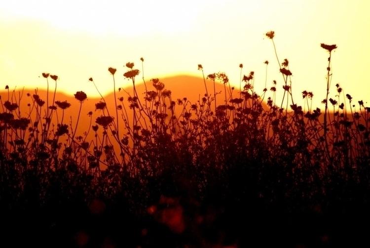 Sunset Azores - euric | ello