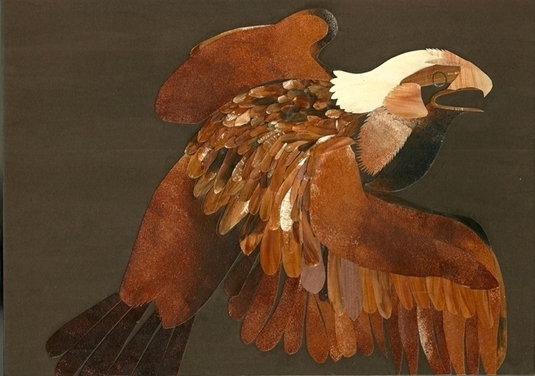Eagle - illustration, collage, paper - staceyknights | ello