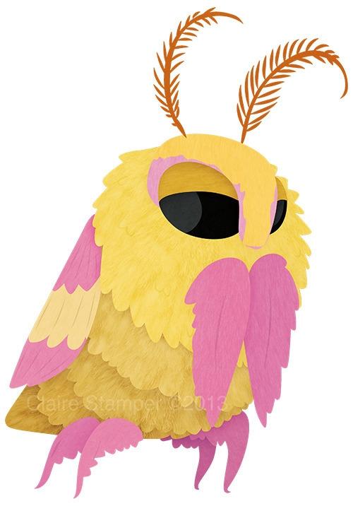 Rosy Maple Moth - rosymaplemoth - clairestamper | ello