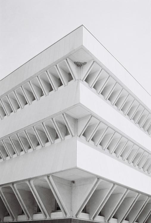 C41 Black white film Photograph - anlia-8183 | ello