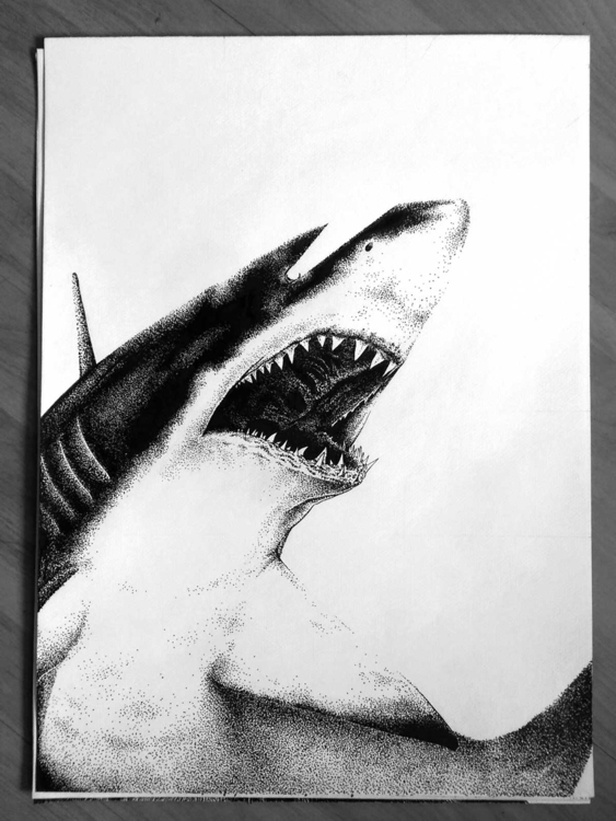 Original drawing Eye Shark Silk - marceautruffaut | ello