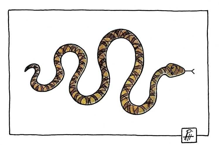 Snake - illustration, painting, icon - marcorizzi-1205 | ello