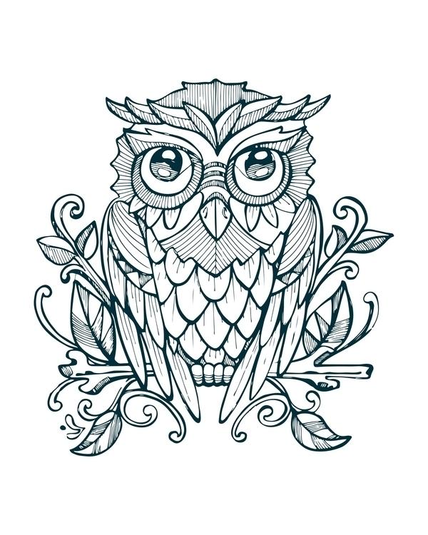owl,animal,illustration,drawing,beak,wings,bird, - bernardojbp | ello