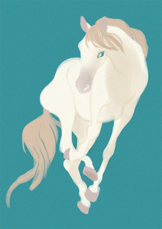 horse, pony, illustration, keit - keit | ello