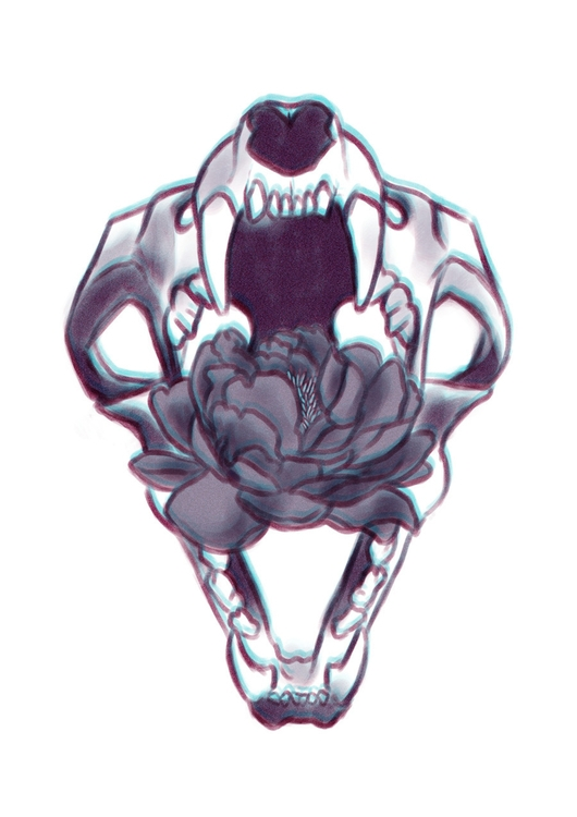 skull, peony, flower, nature - keit | ello