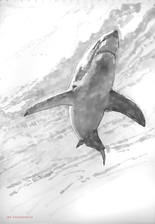 White fear Tria Markers, A3 - shark - jandraws | ello