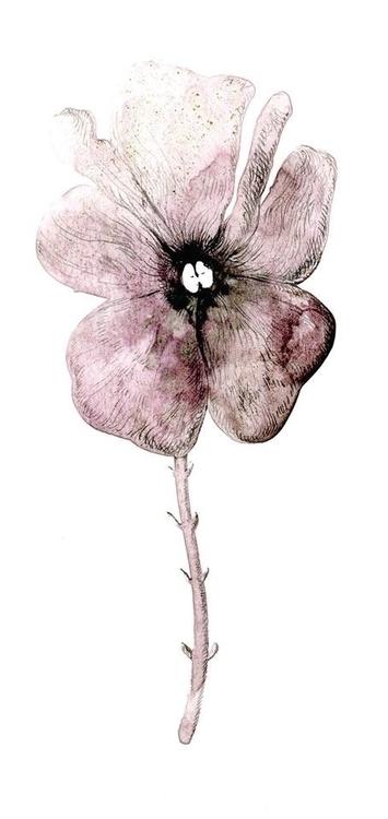 illustration, flower, flowers - gonsero | ello