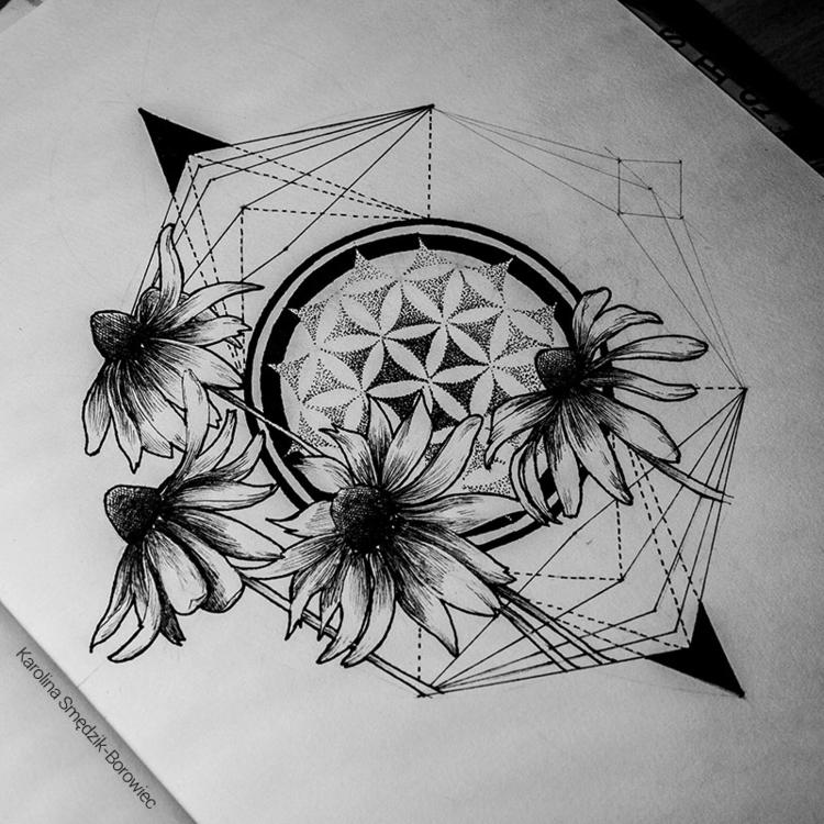 Rudbeckia - illustration, drawing - karolina-4327   ello