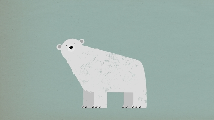 animals, illustration, polarbear - scottwenner | ello