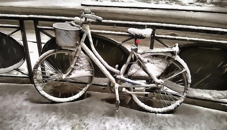 Cicli innevati - citybike, bike - bariom | ello