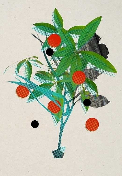 flowgard - flower-project - collage - kopfsprung-4141 | ello