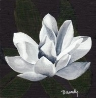 Magnolia - painting - brandyhouse | ello