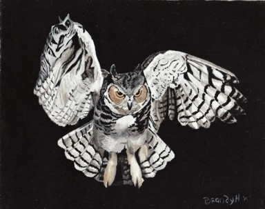 Screech Owl - painting - brandyhouse   ello