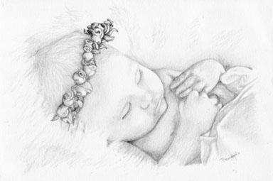 Baby Roses - drawing - brandyhouse | ello
