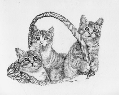 Kitten Mischief - drawing - brandyhouse | ello