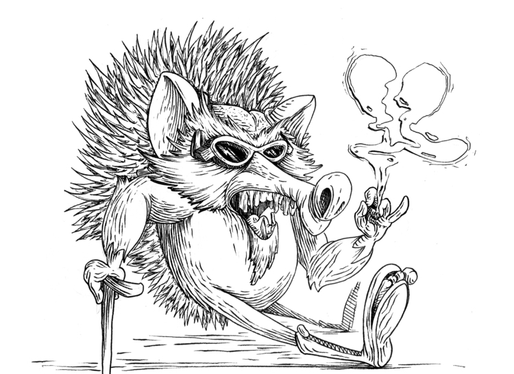 Rejected hedgehog - illustration - kaiman-6057 | ello