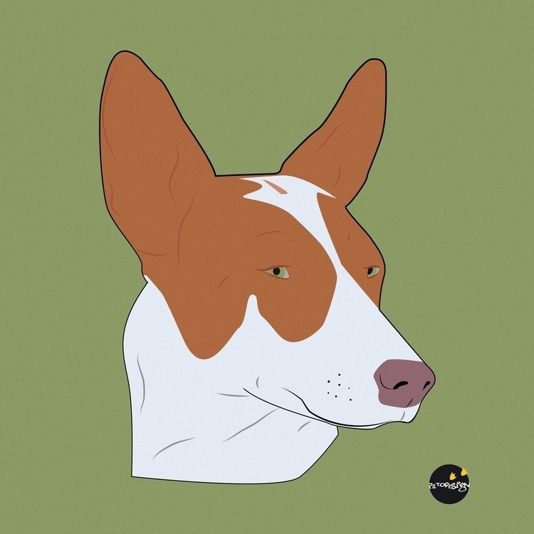 Podenco - illustration, animals - patodesign | ello