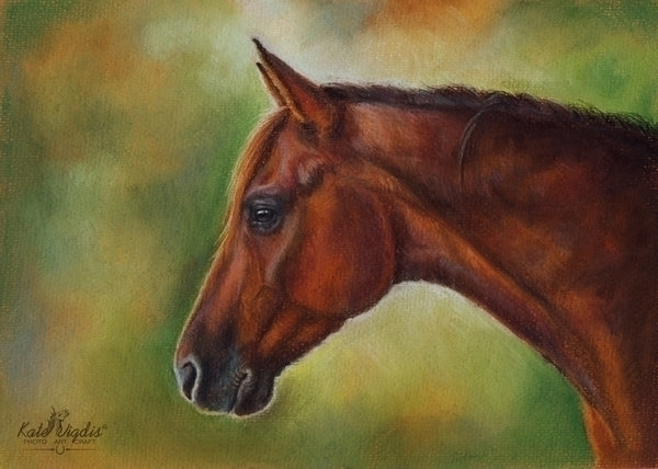 Pastel paper - horseportrait, illustration - kate_vigdis | ello